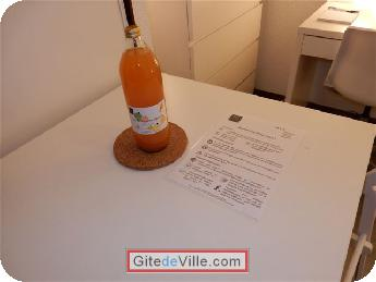 Self Catering Vacation Rental Grenoble 9