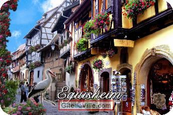 Self Catering Vacation Rental Eguisheim 8