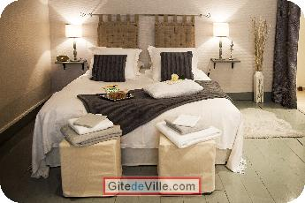 Vacation Rental (and B&B) Lille 3